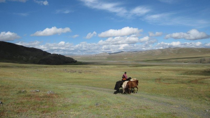 Caval&go : l'amour du cheval et du voyage 3
