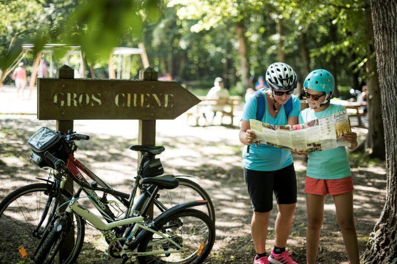 Vélo, canoë, moto, parapente… Une sélection d'offres « sport » en Alsace 1