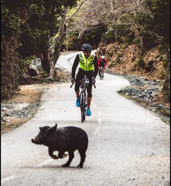 Et si vous vous lanciez dans l'ultra cyclisme avec BikingMan ? 3