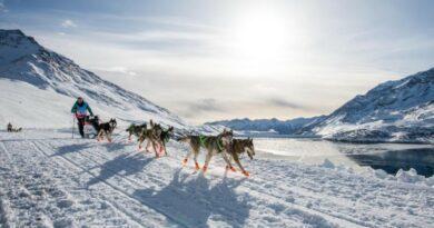 La Grande Odyssée Savoie Mont Blanc dans les starting blocks 6
