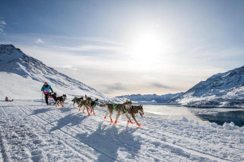 La Grande Odyssée Savoie Mont Blanc dans les starting blocks 1