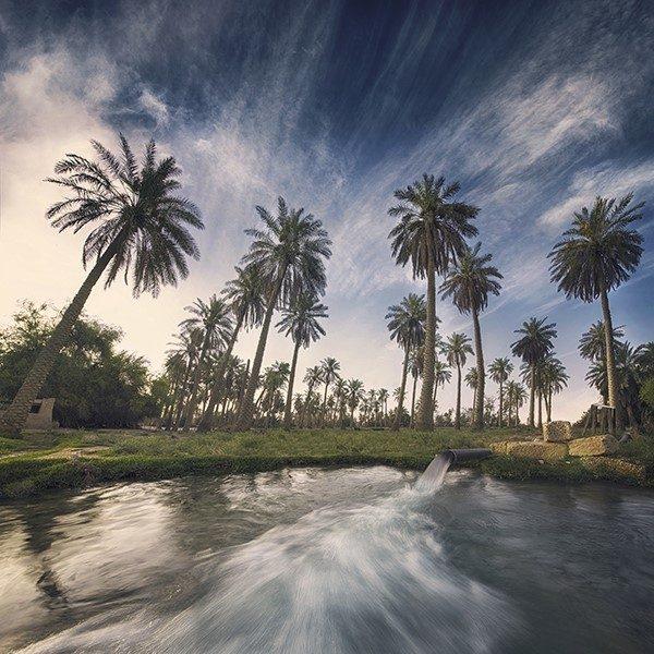 Avec le Dakar, l'Arabie Saoudite s'offre une vitrine touristique et son lot de polémiques 6