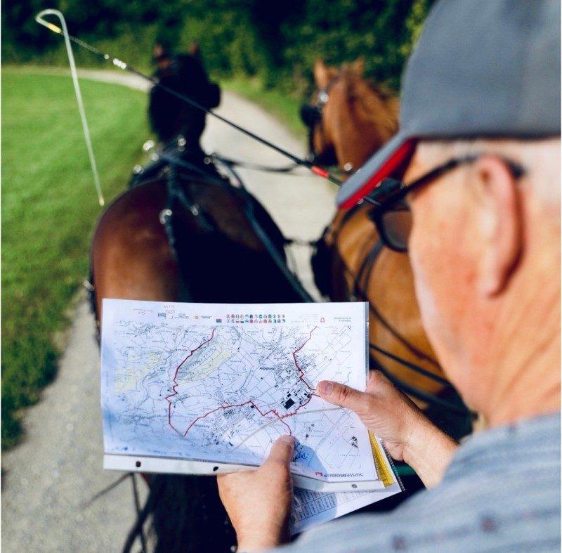 Avec « La route du poisson », les chevaux de trait reprennent du service 3