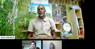 Rando en Martinique : de nouveaux parcours pour profiter de la générosité des paysages 8