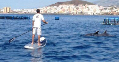 Quatre activités outdoor qui ont le vent en poupe à Tenerife