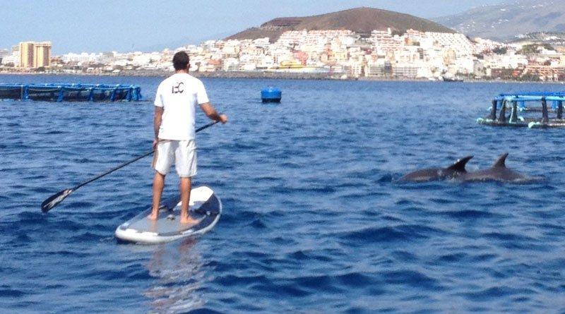 Quatre activités outdoor qui ont le vent en poupe à Tenerife 1