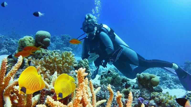 La Guadeloupe côté mer : cinq îles, cinq ambiances 1