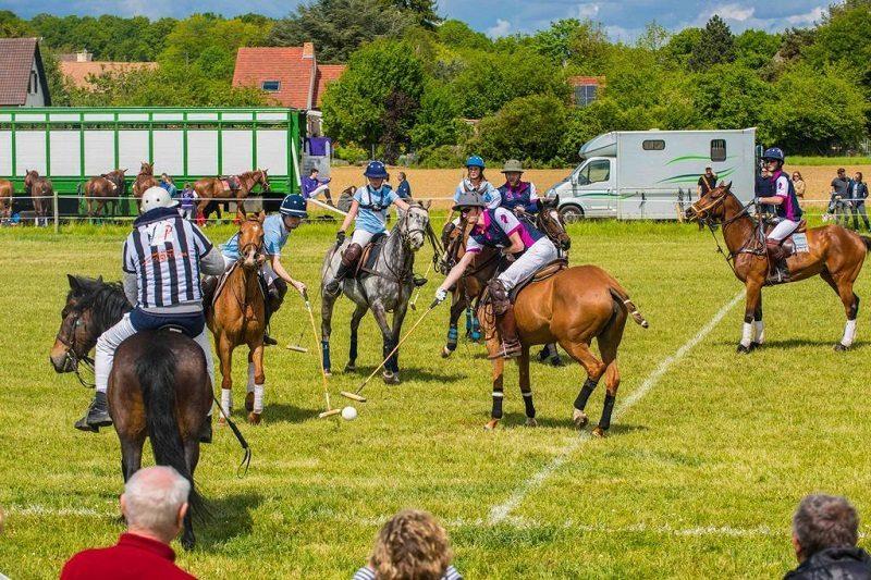 En Vallée de Chevreuse, le cheval au coeur d'activités de teambuilding 2