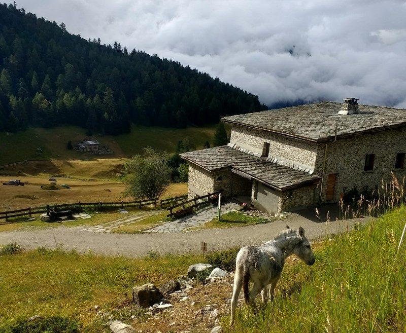 Mountain Collection 2021 : le 11 août, montée de l'Orgère via Polset 1