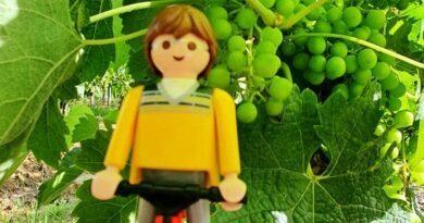 Tour de France, Etape 20. Au cœur des vignobles les plus prestigieux 9