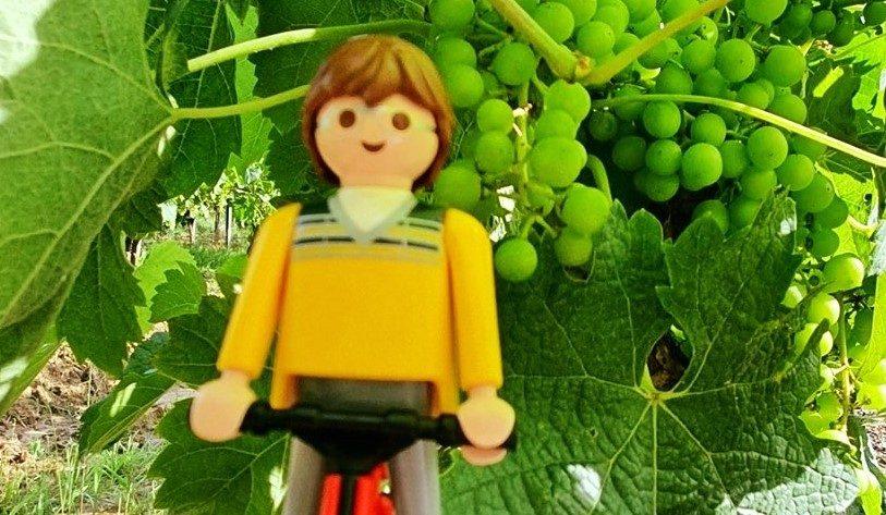 Tour de France, Etape 20. Au cœur des vignobles les plus prestigieux 1
