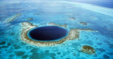 Les plus beaux spots de plongée d'Amérique Centrale 1