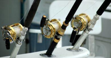 Quel moulinet pour la pêche en mer ? 3